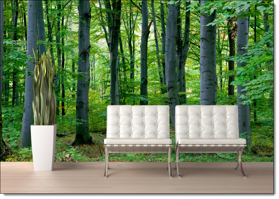 woodland forest peel and stick wall mural tropical island resort peel and stick wall mural