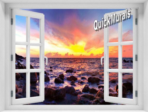 Accent Window Murals