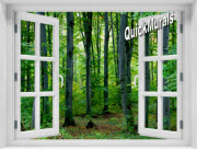 Woodland Forest Window 1-Piece Peel & Stick Mural