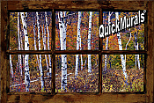 Birch Forest Window Peel & Stick (1 piece) Wall Mural