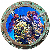 Undersea Porthole #3 Wall Mural