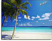 Tropical Ocean Peel and Stick Canvas Wall Mural