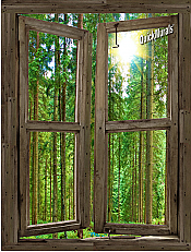 Country Cabin Window Peel & Stick (1 piece) Canvas Wall Mural