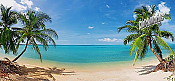 Coconut Beach Panoramic Peel And Stick Wall Mural