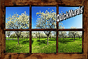Orchard Window (Rustic) Peel & Stick Wall Mural