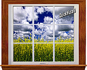 Country Fields Window 1-Piece Canvas Peel & Stick Wall Mural